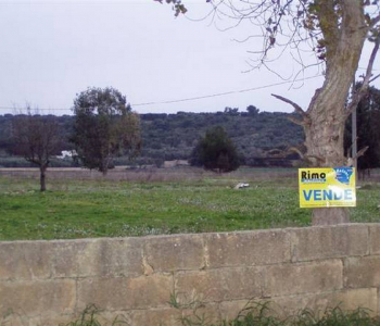 V093, Terreno Edificatorio Taviano