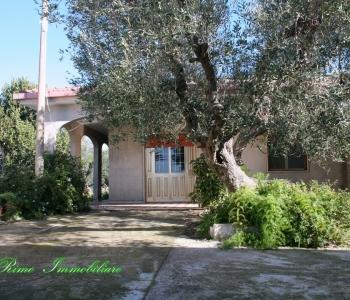 V365, Villa Salento